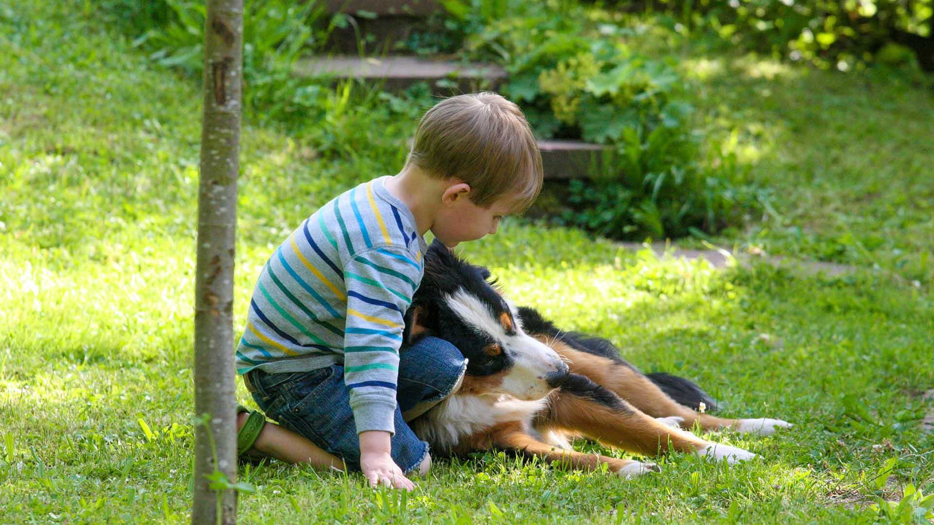 Ferienhaus am Schönwasen - Kinder mit Hofhund