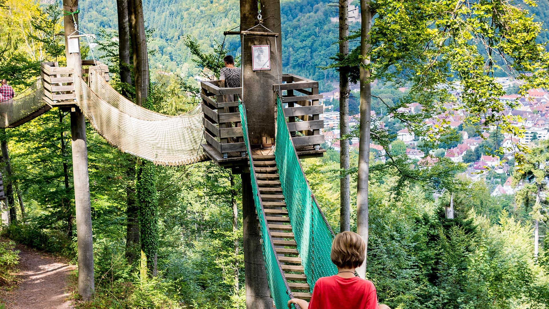 Ausflugsziel Baumwipfelpfad in Waldkirch